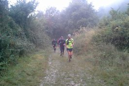 Reco du 14km de la Jasseronnai'se Trails